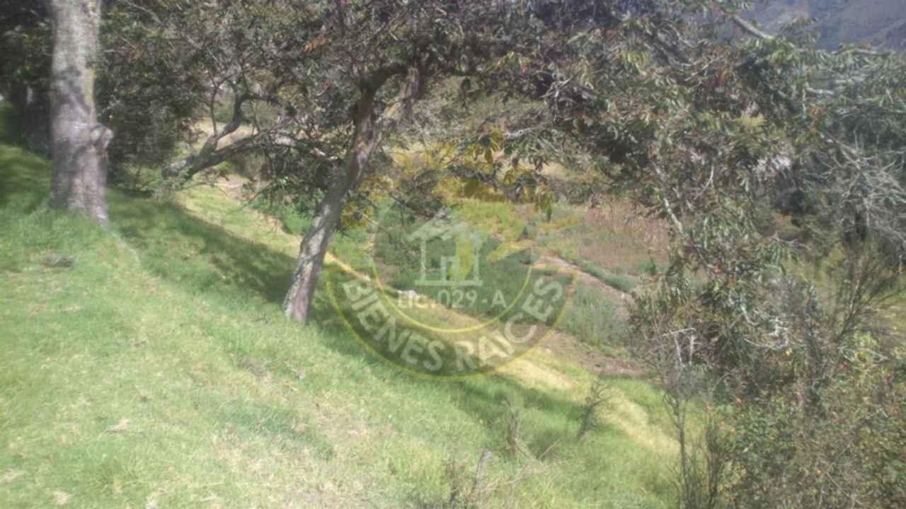 Ranch for Sale in Cuenca Ecuador sector Carmen de Gualaceo