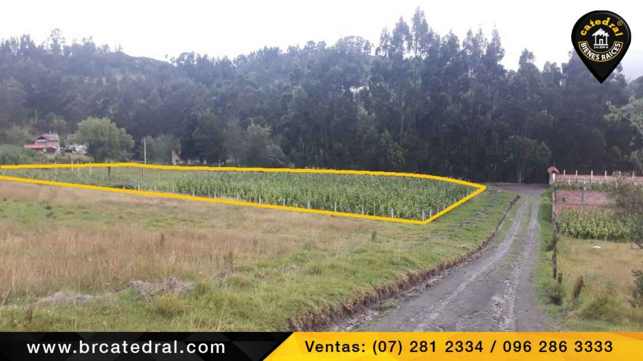 Land for Sale in Cuenca Ecuador sector Guncay- El Valle
